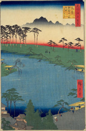 Edo100