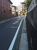 20161112_8408